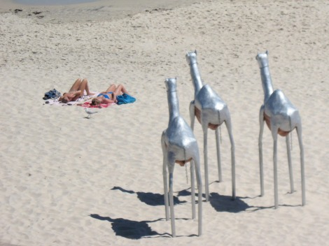 Sculpture by the Sea, Cottesloe, Western Australia
