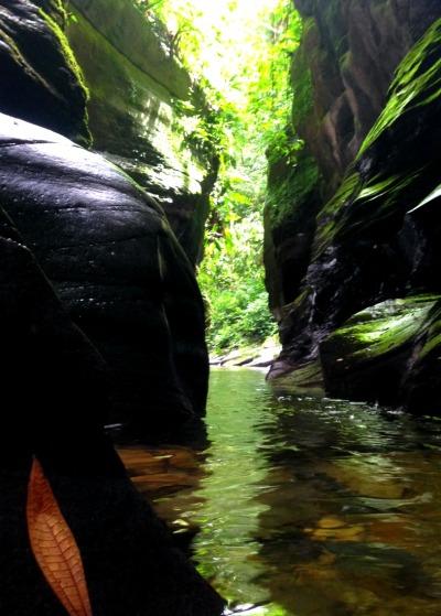Guanapo Gorge Trinidad