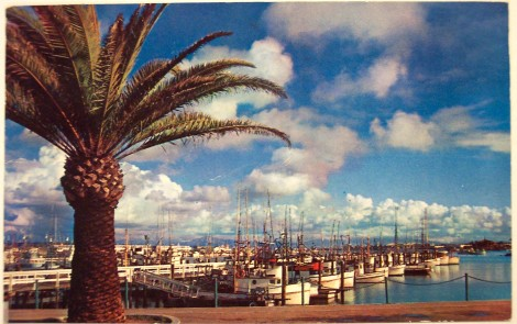 vintage postcard San DIego fishing pier